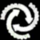 CareSat White Logo.png