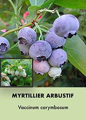Photos arbustes (Modifiable).027.jpeg