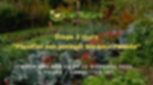 Copie de Copie de Trame event Kiwi Natur
