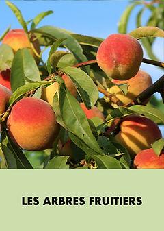 les arbres fruitiers.001.jpeg