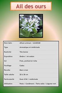 Aromatiques.058.jpeg