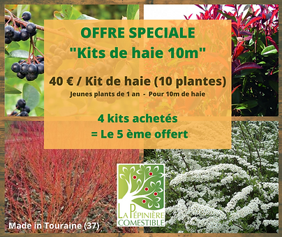 offre kit.png