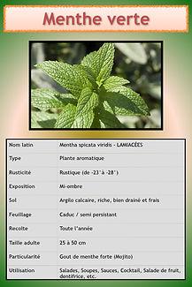 Livret aromatiques.045.jpeg