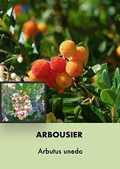 Photos arbustes (Modifiable).002.jpeg