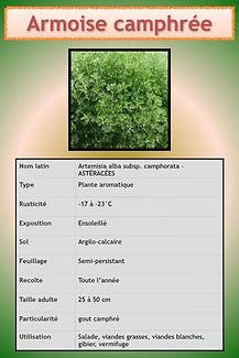 Aromatiques.028.jpeg