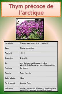 Livret aromatiques.093.jpeg