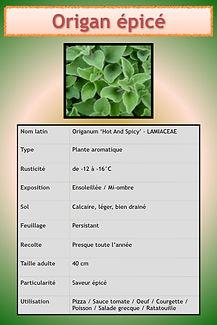 Livret aromatiques.065.jpeg