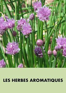 Les harbes aromatiques.001.jpeg