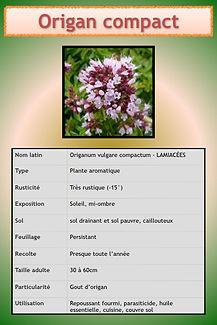 Livret aromatiques.064.jpeg