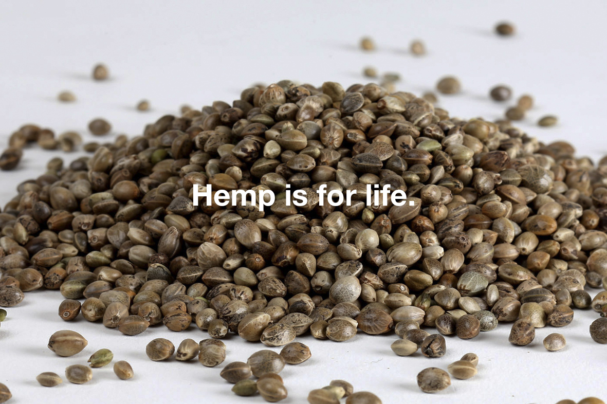 Themptation Organic Hemp Seeds