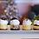 Thumbnail: Holiday Cheesecake Sampler (4pk or dozen)