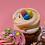 Thumbnail: All Things Easter Cupcake Box