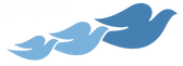 Logo_DSEP_edited.png