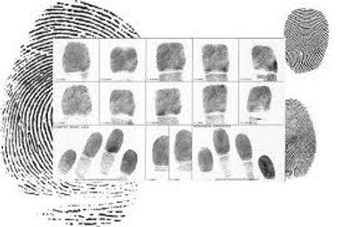 fingerprints.jfif