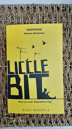 Liccle Bit, Alex Wheatle (Young Adult / Teenage)