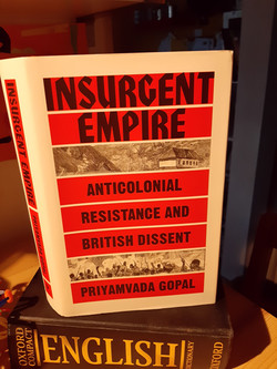 Insurgent Empire -Anti-Colonial Resistance and the British Dissent by Priyamvada Gopal£25.00