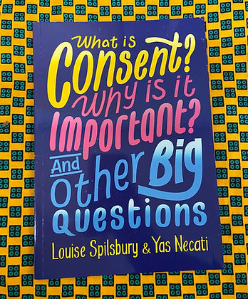 What is Consent? Why is it Important? And Other Big Questions