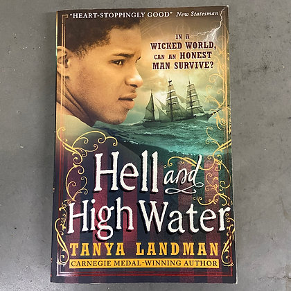 Hell and High Water (Paperback) by Tanya Landman (TEEN)