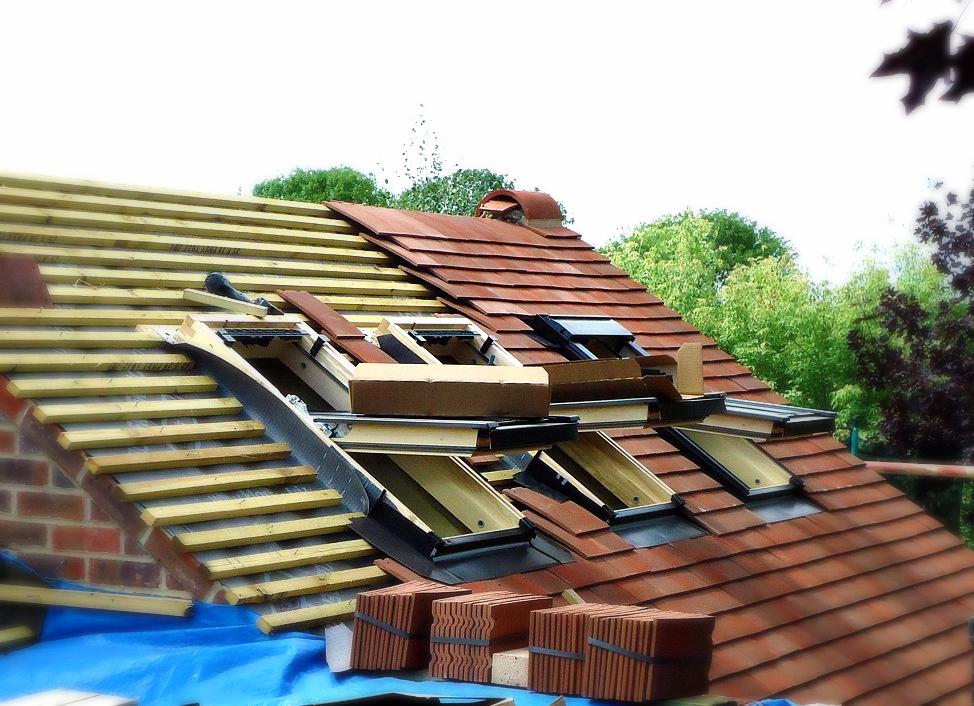 roof web_edited