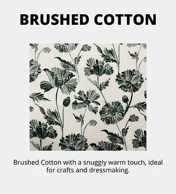 brushed (1).jpg