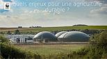 WWFQuelsEnjeuxPourUnDéveloppementDurab