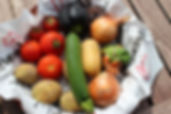 Canva - Close-up of Vegetables.jpg
