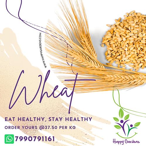 Tukdi Wheat - responsibly grown