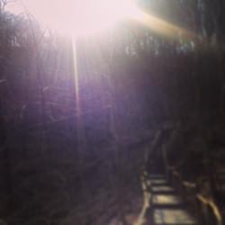 Instagram - Nationalpark Jasmund