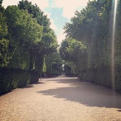 Instagram - Park in Schloss Schönbrunn