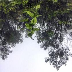 #madaboutmadeira #nature
