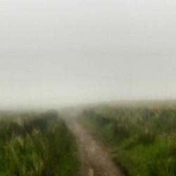 Instagram - Fog day, Runde