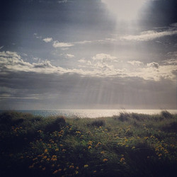 Instagram - coast to coast