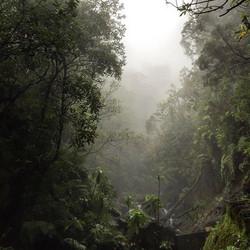 #deepends #madaboutmadeira #nature