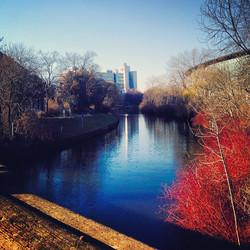 Instagram - tiergarten