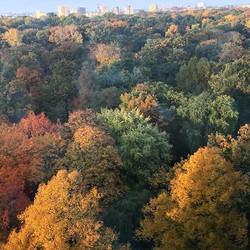 Berlin Herbst