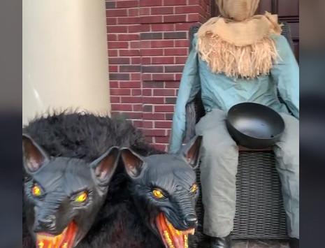13 Spooky Halloween Decorations.
