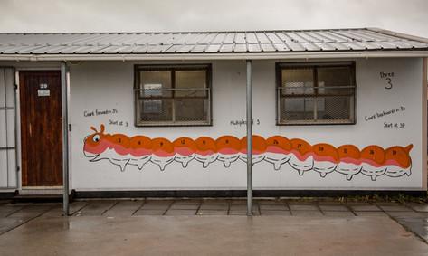 Capricorn Primary School 3
