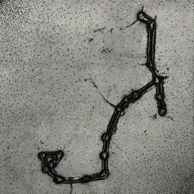 Celestial X-ray: Scorpio