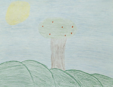 Aby Wilcox grade 6 drawing entry 1.jpg