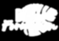 Logo DEX FORMATION BLANC-01 (1).png