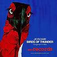 JEROME- Birds of Thunder-Original X Mix.