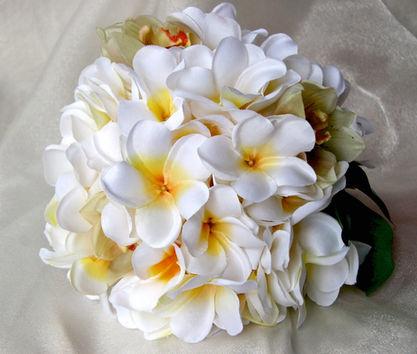 White Yellow Frangipanis