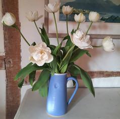 Mount Tacoma tulips
