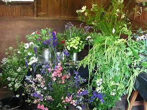 English cottage garden flowers, cut flowers, flowers in a stable