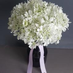 Orlaya Bouquet