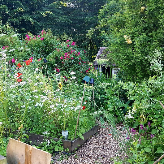 English cottage garden full of summer flowers