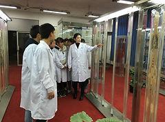 Chinese Medicine Training - TCM University