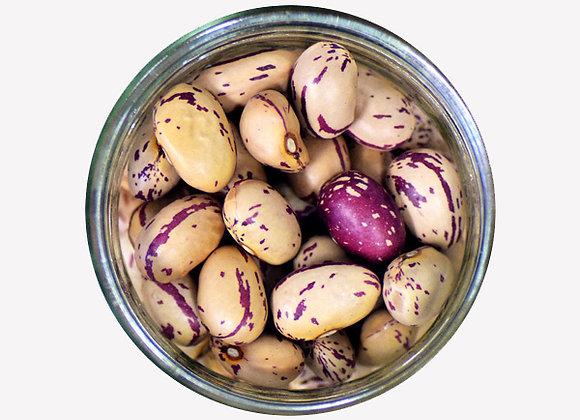 Pinto Beans - 400g