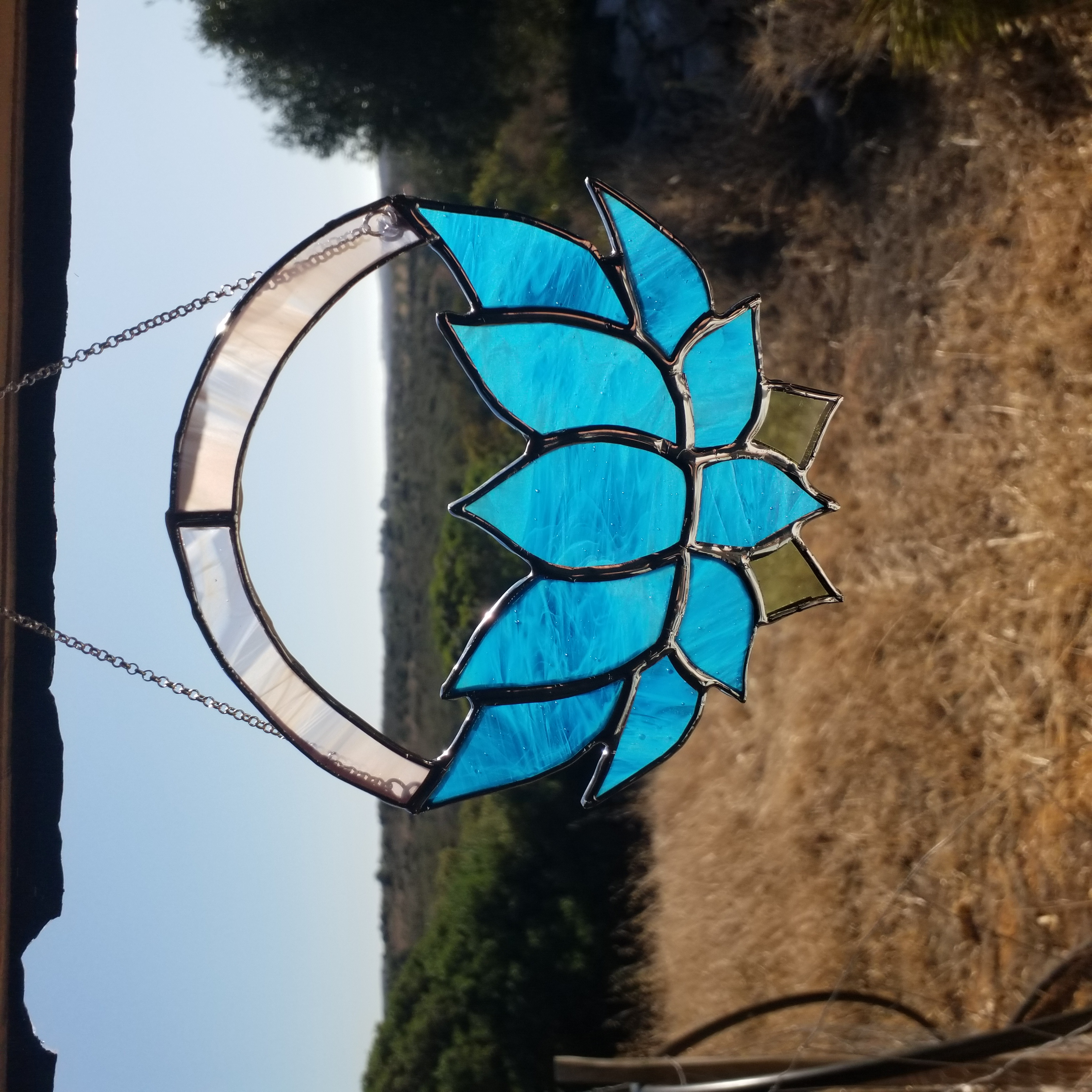 small blue lotus , 20 euros