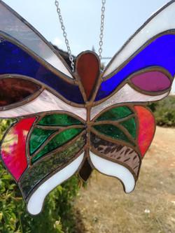 Butterflies various designs